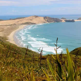 Cape Reinga views