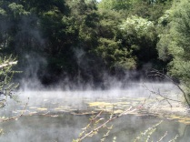 What looks like mist in the morning sun is a steaming hot lake