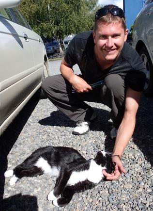 Olli the cat