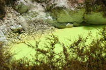 Waiotapu Yellow Pool