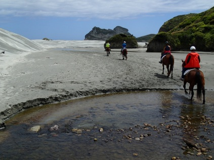 Cape Farewell Horse Trek