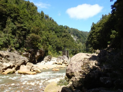 Charming Creek Walk