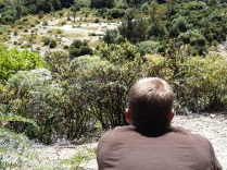 the other hobbit watching for oliphants