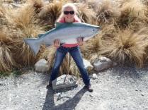 trophy salmon