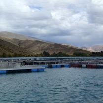 High Country Salmon Farm