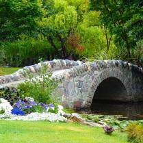 Queenstown botanical garden