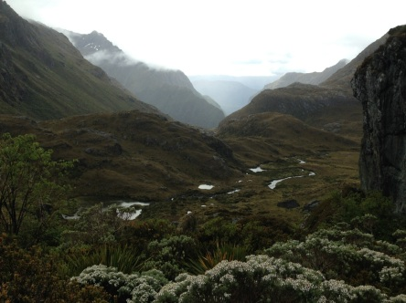 view back into Dart Valley