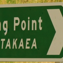 The road to Shag Point