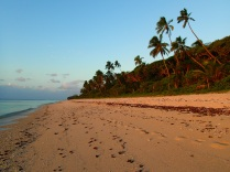 … beach in the evening ...