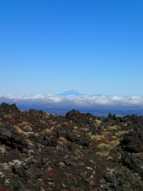 The view was great and there's Mount Taranaki in the distance