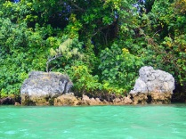 Efate Blue Hole