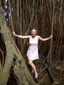 Bea and the big Banyan