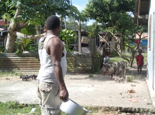 Mele village life