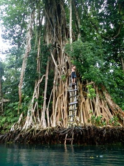 Tarzan at the monkey swing … AYAYAYAHH!