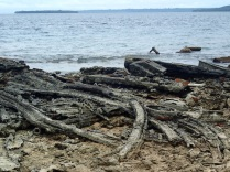 rusting metal beams for hundreds of metres along the shore