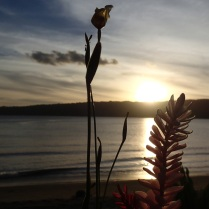 sunset in Mele beach